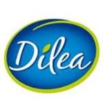 Dilea