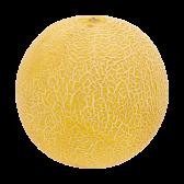Jumbo Galia meloen (voor uw eigen risico)