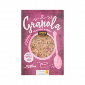 Jumbo Granola with oat, pumpkin seeds and red fruit