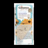Consenza Gluten free raisins-teff