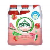 Spa Duo strawberry and watermelon 6-pack