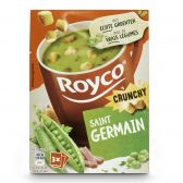 Royco St Germain soup with crusts