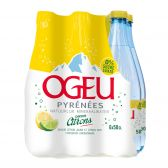 Ogeu Lemon lime spring water 6-pack