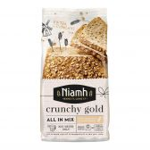 Niamh Crunchy gold all in bread mix