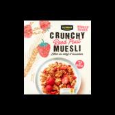 Jumbo Red fruit crispy cereals