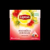 Lipton Rooibos herb tea infusion