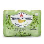 San Pellegrino Biologische limone en thee verfrissende drankje 6-pack