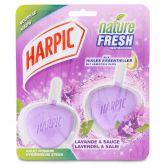 Harpic Hygienic stone nature fresh pine