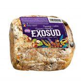 Exosud Rozijnenbrood (voor uw eigen risico, geen restitutie mogelijk)