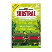 Substral Food sticks for green plants
