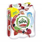 Spa Grenadine fruit lemonade 6-pack