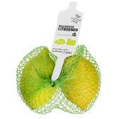 Albert Heijn Biologisch citroen (voor uw eigen risico)