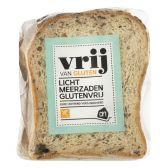 Albert Heijn Gluten free light multiseeds bread (at your own risk)