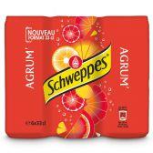 Schweppes Agrum 6-pack